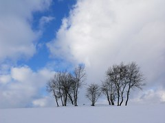 Family (bernd obervossbeck) Tags: schnee winter sky snow himmel breathtaking sauerland aplusphoto unature unaturefav