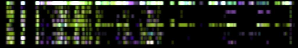 DNA test 002