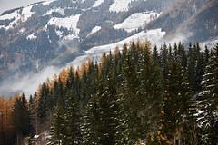 Naturpark Almenland_41 (Klima- und Energie-Modellregionen) Tags: klimafreundlicher naturpark almenland