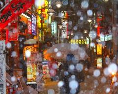 at. yotsuya (Re: L.S.P. tokyo) Tags: snow neon night winter しんみち通り 四ツ谷 雪 ネオン japan