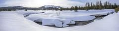 Snow covered Castle Creek in Van Norden Meadow pano1-01 2-13-17-Pano-1