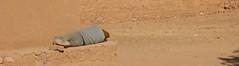 siesta (diminoc) Tags: timidarte morocco sun siesta snooze sleep alone man sand orange outside