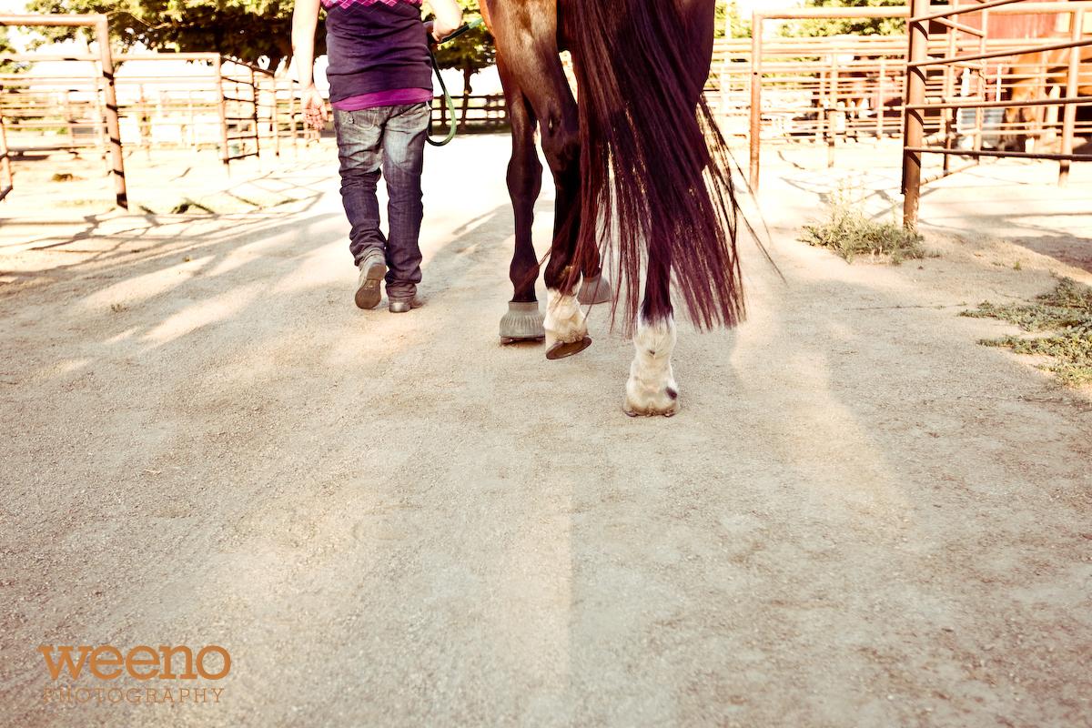 Aniah & Horses (3 of 28)