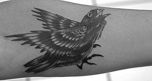 Jason Schroder, tattoo, bird tattoo, black bird tattoo