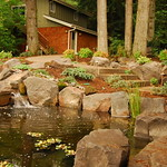 "Calming Koi Pond by Greenhaven Landscapes <a style=""margin-left:10px; font-size:0.8em;"" href=""http://www.flickr.com/photos/117326093@N05/12994779724/"" target=""_blank"">@flickr</a>"