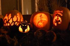 DSC_5774 (wylew) Tags: halloween pumpkins jackolanterns