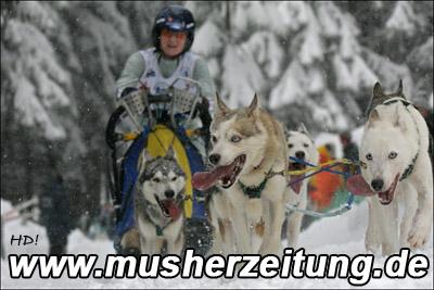 Schlittenhunde WM 2006