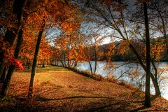 My Love of Autumn ( D L Ennis) Tags: trees fall river bravo afternoon peaceful foliage blueridgemountains 2007 jamesriver november16 magicdonkey anawesomeshot superbmasterpiece dlennis myloveofautumn