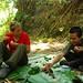 Jungle picknick