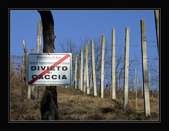 Monferrato (iabo77) Tags: winter piemonte inverno vigne caccia divieto monferrato vigneti