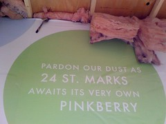 Pinkberry Pink Insulation