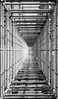 Tunnel of rod (Luc Deveault) Tags: bw canada abstract contrast race interestingness quebec montreal tube f1 structure nb course notredame explore québec contraste rod luc grayscale circuit abstrait gradin gillesvilleneuve estrade deveault lucdeveault