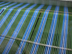 India - Colours of India - Cotton threads becoming a lungi