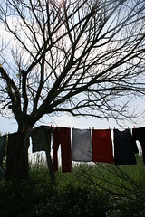 (heffy88) Tags: tree spain clothes caminodesantiago