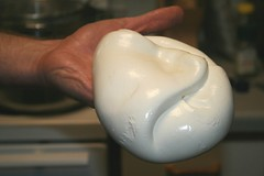 finished mozzarella
