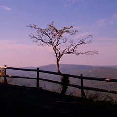 On the Edge (Right Brain | Chris Piazza) Tags: mountain ny newyork tree beautiful contrast fineart cloning upstate upstateny explore newpaltz mohonk ontheedge rightbrain beautifulearth mountainhouse 25faves anawesomeshot impressedbeauty amazingshots thefinalcrown platinumheartaward theperfectphotographer superperfectphotographer