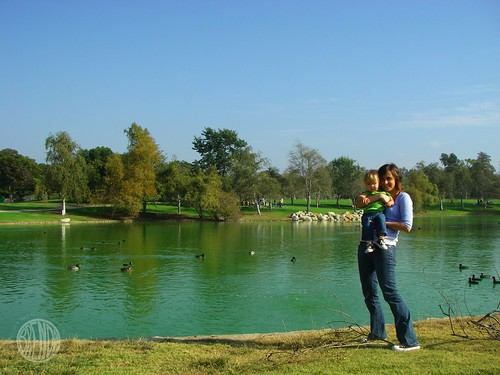 us, at the duck pond