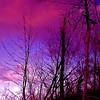 "My Wild River in Pink! (Denis Collette...!!!) Tags: cruise pink canada rose bravo quebec rivière striptease aerosmith sauvage magicdonkey effeuillage impressedbeauty goldenphotographer ""deniscollette"" «wildriver» explorewinnersoftheworld"