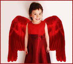 niño ángel querubín