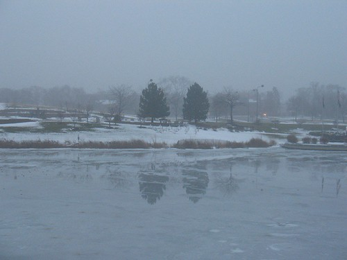 Pond in fog