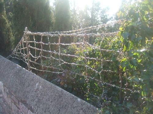 Umbria20070145