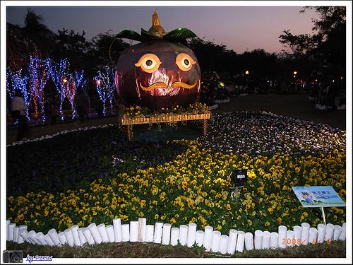 大安森林公園花展 057