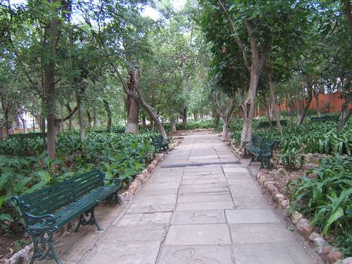 Jardín de las Acacias