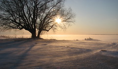 Sun Sky and Snow (ricmcarthur) Tags: sunset rondeau bay wonter icesnowtreenature