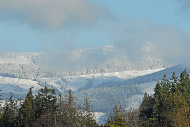 Snow pics 01