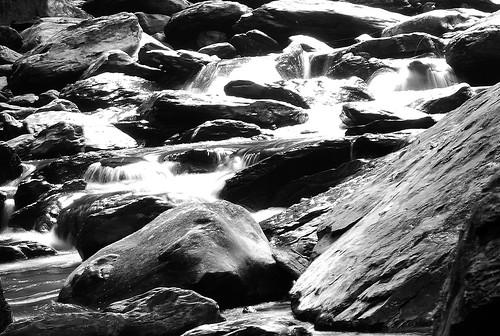 發光的溪水