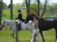 Hot to trot (RogueAngel) Tags: foxfield