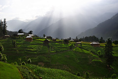 Neelum Valley Kashmir (Max Loxton) Tags: pakistan mountains nature beauty hills huts valley greenery rays kashmir sunrays neelum yasirnisar