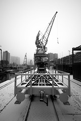 Rotterdam 11-02-2017-8 (Pure Natural Ingredients) Tags: nederland 010 rotjeknor nikon d500 sigma 1020mm sneeuw snow winter cold grey gray port harbour haven black white zwart wit