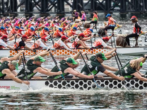 dragon dragonboat dragonboatraces sydney water harbour darlingharbour australia rowing boat olympus omd em10