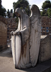 Ángel con escudo_3 (Bellwizard) Tags: barcelona cemetery graveyard angel cementerio montjuïc ángel cementiri àngel