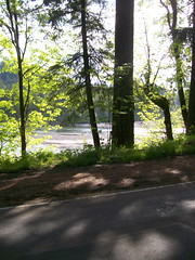 Sunshine on the Sandy River at Oxbow Park