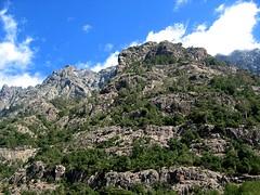 Monte Saltare depuis la Cavicchia