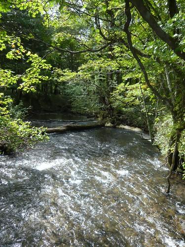 湯滝旁的流水
