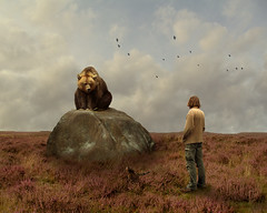 Meeting Mr Bear (Mattijn) Tags: bear rock danger cat photomontage crows pino mattijn amersfoort dierenparkamersfoort purplemoorgrass wanderingthepurplemoor
