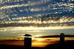 Tonalidades (Landahlauts) Tags: sunset sky silhouette contraluz atardecer andalucía europa europe silhouettes andalucia roofs cielo granada silueta andalusia andalusien tejados andalousie andalusie andaluz alandalus monachil andaluzia الأندلس غرناطة グラナダ andaluzja mywinners andaluzio 安達魯西亞 андалусия アンダルシア אנדלוסיה landahlauts 安達魯西亞自治區 ανδαλουσία アンダルシア州 arbonaida منطقةحكمذاتيالأندلس اندلس منطقةالأندلسذاتيةالحكم منطقةالأندلسذاتيةالحك ანდალუსია 안달루시아지방 แคว้นอันดาลูเซีย андалузија κοιμητήριον 安达卢西亚 أندلوسيا আন্দালুসিয়া andalouzia andalusiya اندلوسيا андалусія андалуси 安達盧西亞