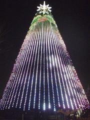 お台場海浜公園のツリー(2007)