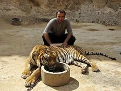 Babak and Tigger
