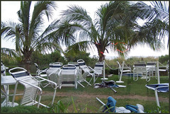 Blown askew (Floater Ya-Ya (Jean McKenna)) Tags: storm palms chairs wind askew topsyturvy oceancitymd msh0610 msh061018