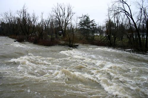 Rapids South of Genesee Bridge