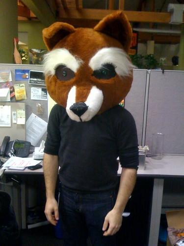 foxhead-1