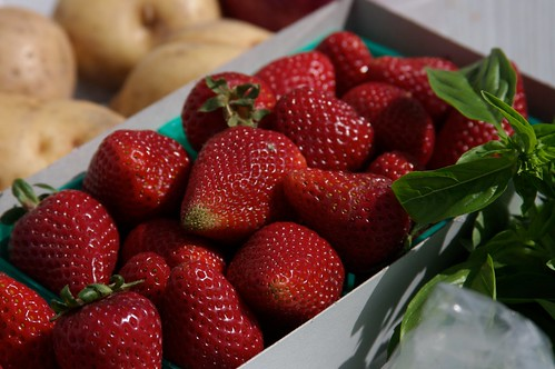 the best strawberries!