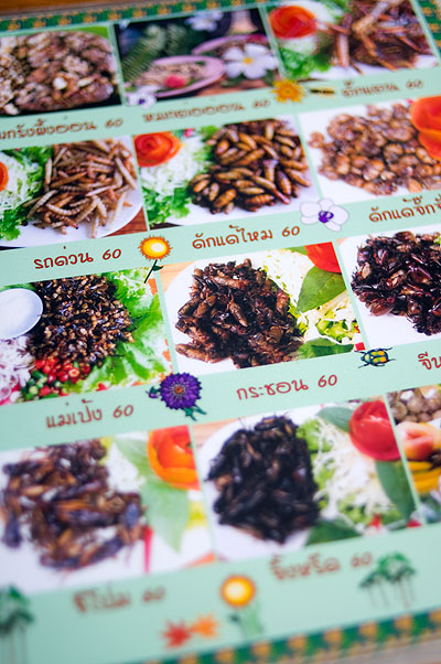 The insect menu at Crokmai Thai Lao