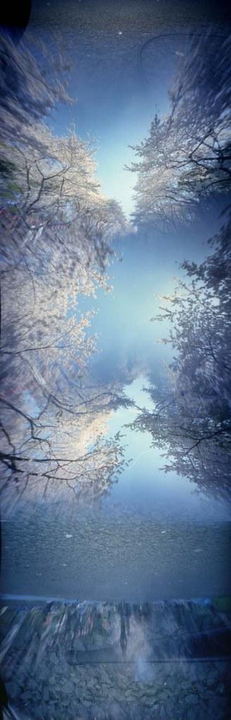 sakura hexomniscope. pinhole view