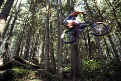 Flying Mike (Evil Erin) Tags: forest action mountainbike gapjump pfogold friendlychallenge