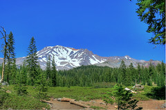Clear Sky above Mt. Shasta (Jill Clardy) Tags: county blue trees sky mountain snow bunny landscape volcano day mt logs clear trail 100views glaciers shasta 500views siskiyou volcanic hdr 0809 photomatix mywinners